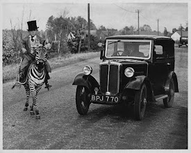Photo: December 1935, Berkshire, England, UK --- A car stops on a country road to let a zebra, ridden by eighteen-year-old midget circus performer, Laffin Leslie, cross. Berkshire, England, 1935. --- Image by © Hulton-Deutsch Collection/CORBIS