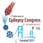 31st IEC, Istanbul 2015