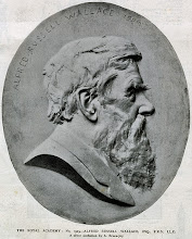 Photo: Photograph from Black & White magazine, May 30, 1908, p. 682, of a silver medallion of Wallace by Albert Bruce-Joy (1842-1924) which was displayed at the Royal Academy in 1908. Copyright: Wallace Memorial Fund.