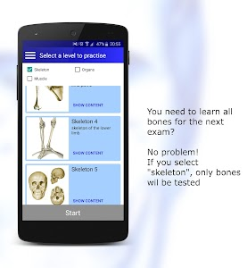 Anatomy Quiz screenshot 6