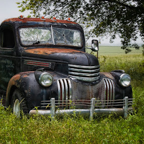 out to pasture by Ruby Del Angel - Artistic Objects Other Objects ( old, truck, automobile, fine art, transportation, things, antique )