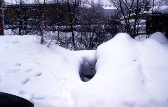 Photo: 1986 Luminen piha, Sopukatu 17