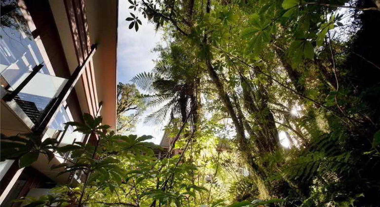 Te Waonui Forest Retreat