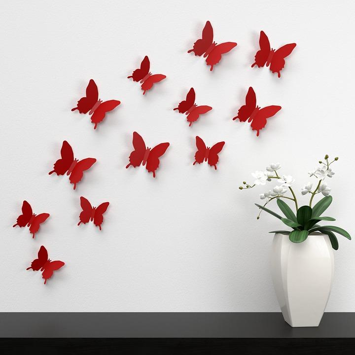 butterfly-1049683_960_720.jpg