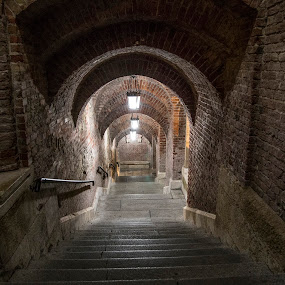 Fisherman's Bastion by Mark Richardson - Buildings & Architecture Architectural Detail ( hungary, budapest, stairs, fisherman's, bastion )