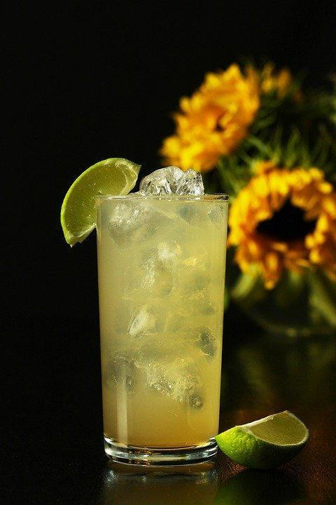 https://cdn.pixabay.com/photo/2019/09/15/13/02/gin-and-ginger-ale-4478226_960_720.jpg