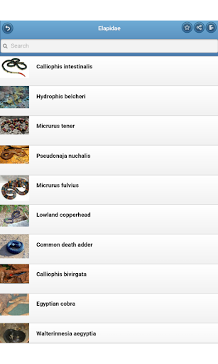 玩免費書籍APP|下載Venomous animals app不用錢|硬是要APP
