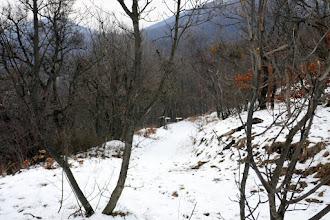 Photo: A Király-völgybe (Staravoda) levezető  jelzetlen erdei út (a S+ n át). Szemben a Kis-Hortoba Nyerges-hegyi Ny-i oldal.