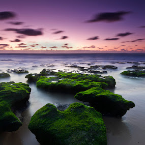 Stone heart by Hugo Marques - Landscapes Waterscapes ( waterscape, seascape )