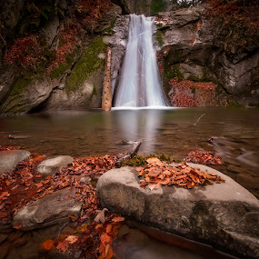 Falling by Petrea Ionut - Landscapes Waterscapes ( water, mountains, autumn, waterscape, waterfall, stones, leaves, rocks,  )