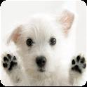 Dog Licks Screen Wallpaper icon