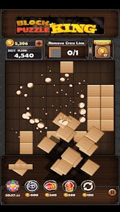 Block Puzzle King Mod Apk: Wood Block Puzzle 3