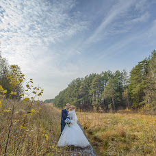 Wedding photographer Elizaveta Shulc (sheb). Photo of 10.02.2015