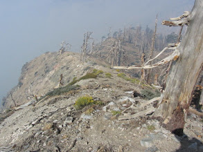 Photo: View west from PCT amidst smoke from the Williams  Fire 2012 and damage from the Curve Fire 2002