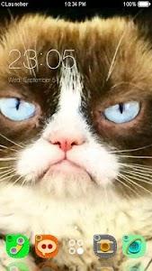 Grumpy Cat Theme C Launcher screenshot 0