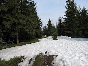 Photo: 24.Na szlaku w kierunku Kikuli (Kykula).