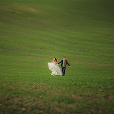 Wedding photographer Lyudmila Pizhik (Freeart). Photo of 05.11.2013