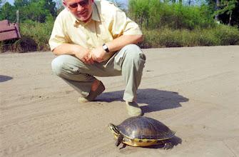 Photo: 2A081040 FL - Dade City - uważać (szkoda auta) na bezczelne żółwie