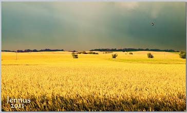 Photo: so weit der Himmel reicht...