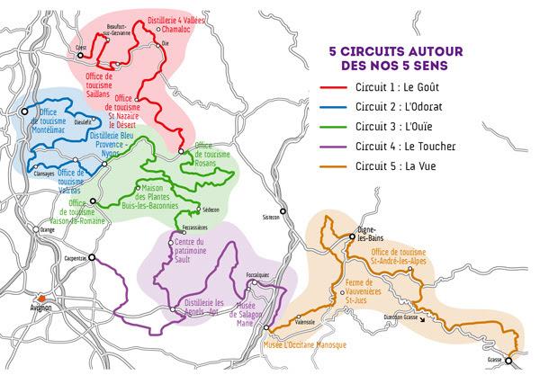 Туристические маршруты по лавандовым полям Прованса