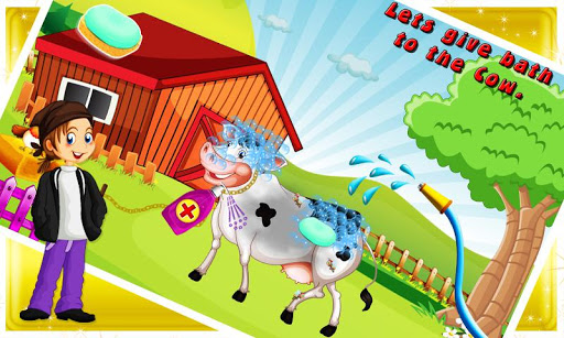 Cow Pregnancy Doctor Care