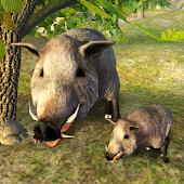 Survive Wild Boar