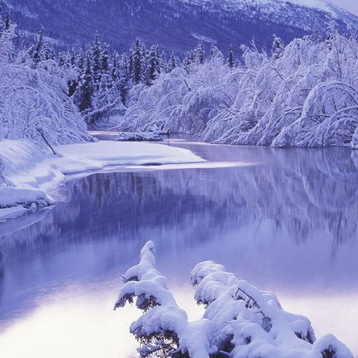Best Winter Wallpapers