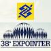 BB Expointer icon