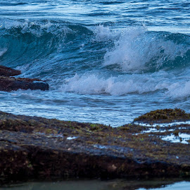 Rolling Waves by Dale Fillmore - Nature Up Close Water ( waves, ocean, shoreline, beach, water,  )