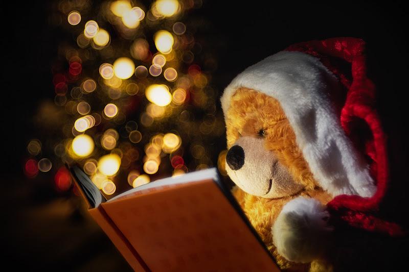 Il Natale di Bonnie di Barbara Surimi