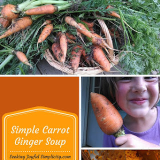 Simple Carrot and Ginger Soup