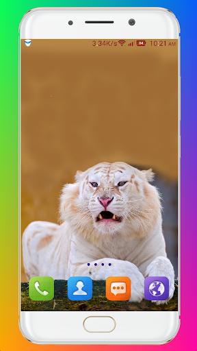Animal Wallpaper HD screenshots 2