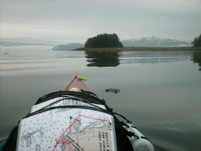 Photo: July 20 - Point Louisa in Auke Bay