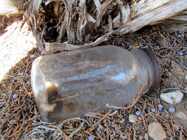 Mason jar under a tree