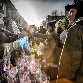 Flowers by Nicola Scarselli - People Street & Candids ( backlit, london, markets, flowers, street photography )