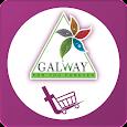 Galwaykart