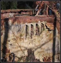 Photo: 12. november 2011 - Bilkirkegård