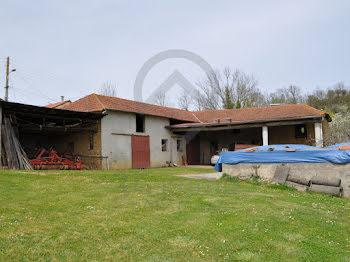locaux professionels à Castelvieilh (65)