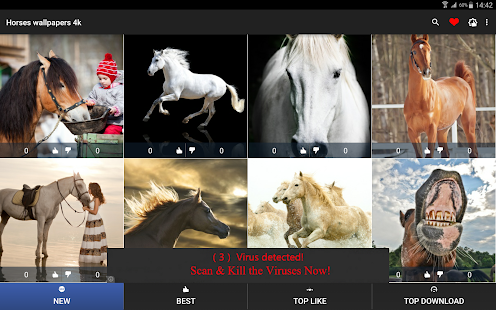 Horses wallpapers 4k android apps on google play horses wallpapers 4k screenshot thumbnail voltagebd Image collections