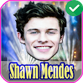 Shawn Mendes Songs Offline 2020 APK