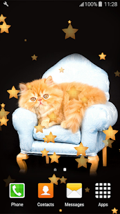 Persian Cats Live Wallpapers - náhled