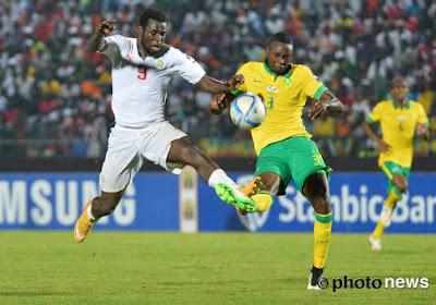 Un Belge à la tête des champions d'Afrique 2012!