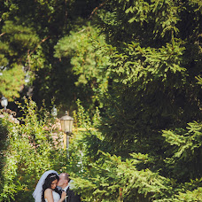 Wedding photographer Anna Larina (larina). Photo of 08.04.2015