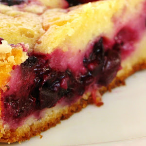 Yogurt and Wild Berries Pie