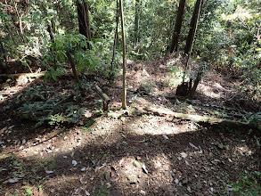 途中の分岐(左がハイキングコース、右は登山口へ)