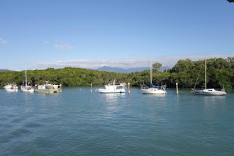 Photo: Inlet, Port Douglas.