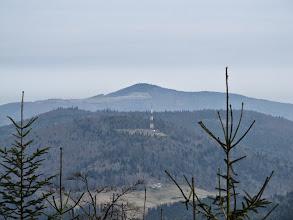 Photo: 11.Spomiędzy drzew widać czasami Mogielicę (1170 m) w Beskidzie Wyspowym. Góra z antenką to Kiczora Kamienicka (1003 m).