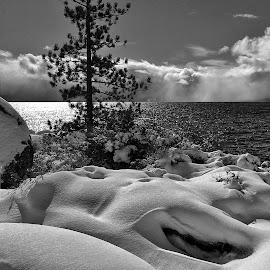 Sand Harbor  by Dan Larsen - Landscapes Beaches