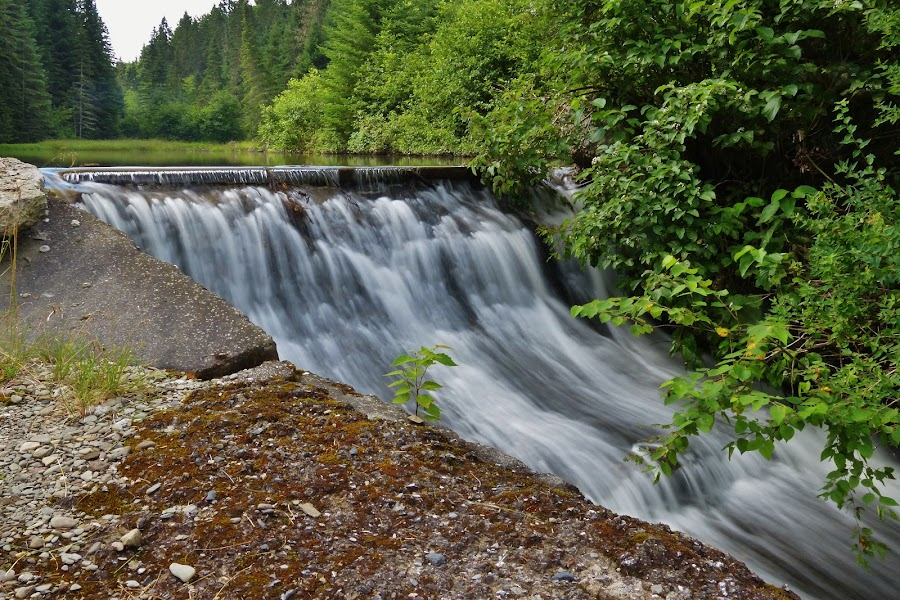 Dam  by Gilman Michaud - Nature Up Close Water