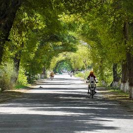 by Mohsin Raza - Transportation Roads (  )